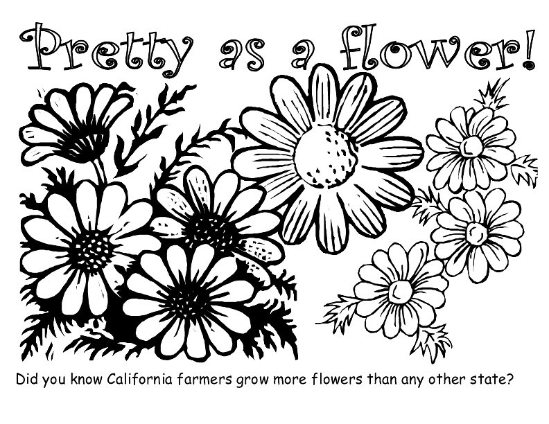 pretty flowers coloring pages - photo#25